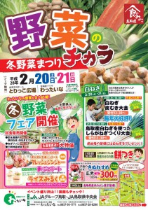 野菜のチカラ おもて_01.jpg 2016